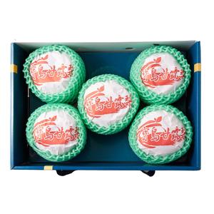 寶島甘露梨5入禮盒(每盒約4公斤±10%)