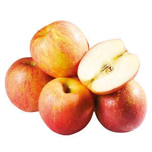 紐西蘭富士蘋果#90 4入(每粒約200克)