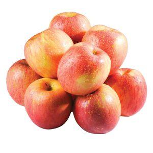 Fuji Apple #113