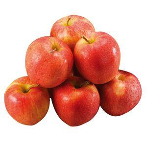 紐西蘭加拉蘋果#120-10入(每粒約120克)