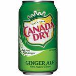 Canada Dry經典風味汽水, , large