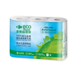 C-Recycled Toilet Paper Rolls