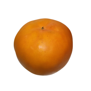Fuyou Persimmon
