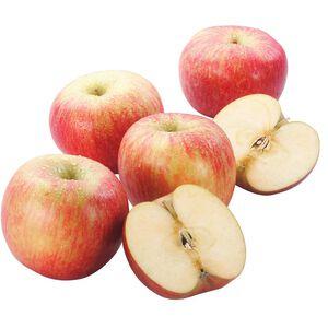 Fuji Apple #88