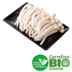 CFBIO White Swordbelt Mushroom