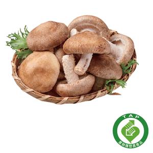 CFPLB Mushroom 400g