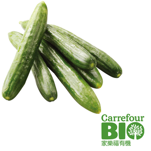 CFBIO Cucumber