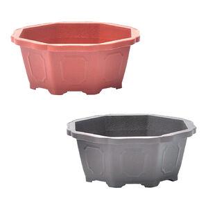 Anise flower pots