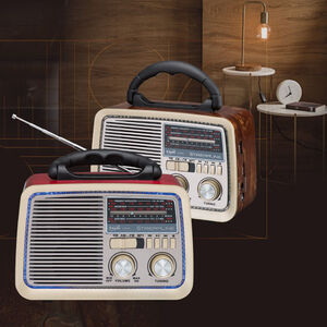 E-books D35 BT Speaker with Radio