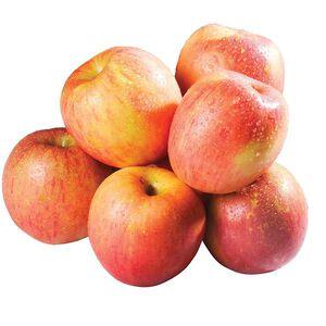 紐西蘭富士蘋果#110 (每粒約150克)