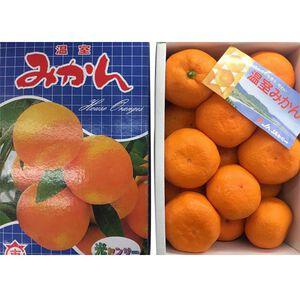 【福和嚴選】日本佐賀縣溫室蜜柑(每盒約1KG)