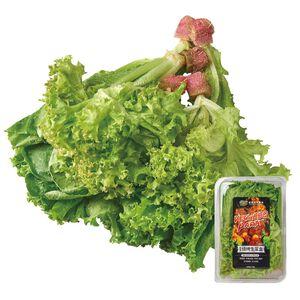 源鮮綜合燒烤生菜盒(每盒約180克±10%)