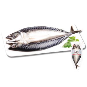 Salted Mackerel