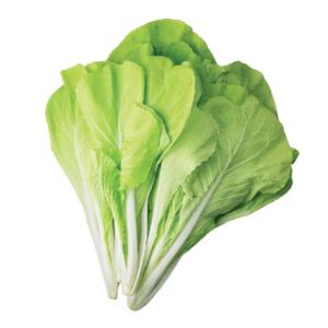 小白菜(每包約250公克)