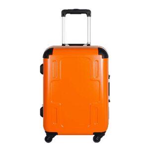 C-F2501 19.5  Luggage