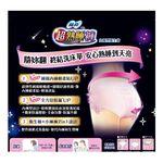 蘇菲超熟睡內褲型衛生棉XL2片, , large